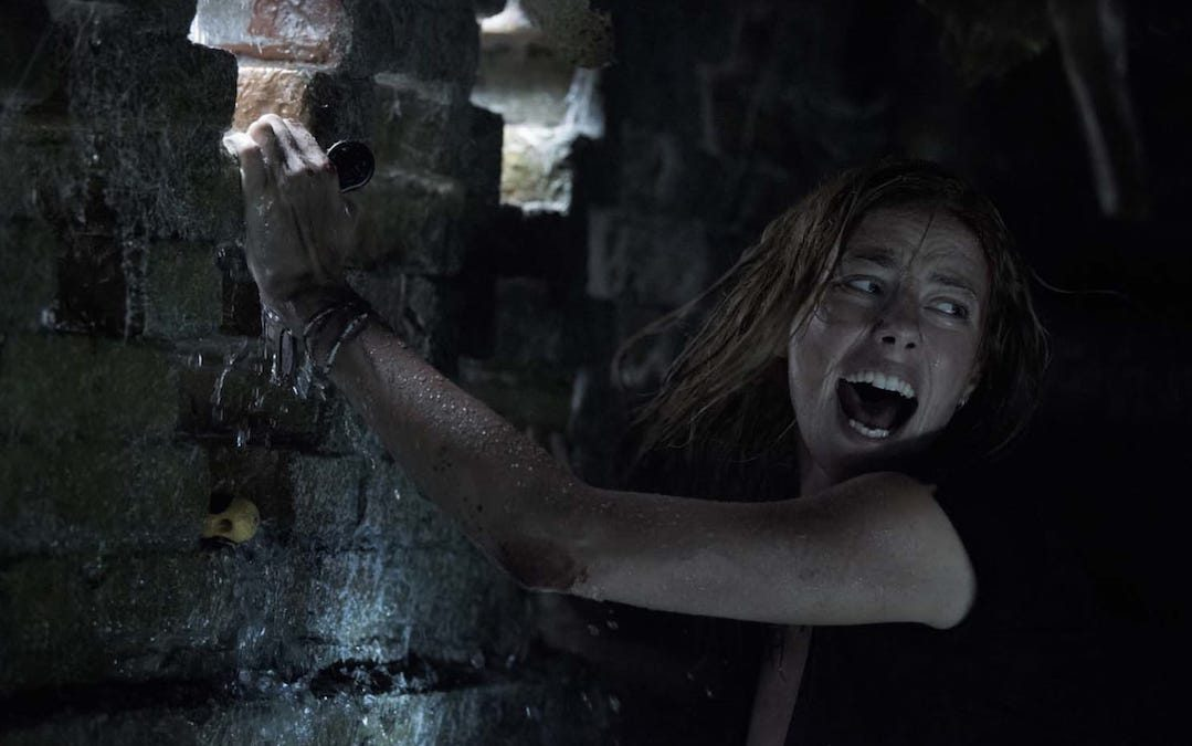 In Theaters This Weekend: 'Crawl' And 'Stuber'